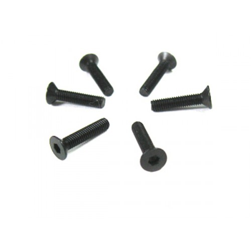 3*14 Flat Head Screws 6P
