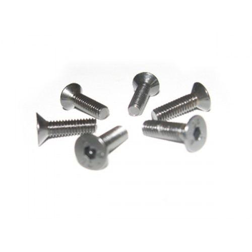 4*16 Flat Head Screws 6P